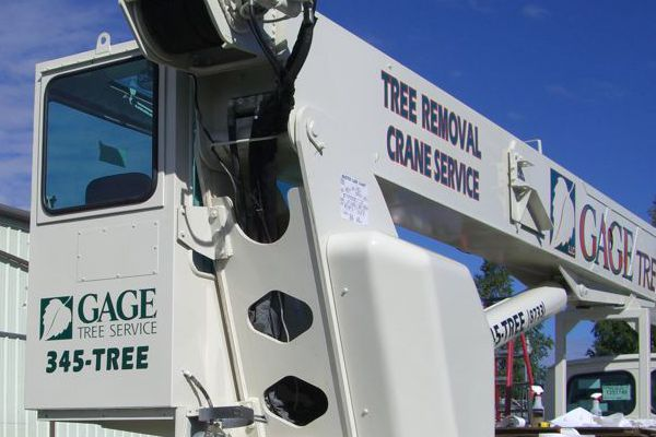 More Vinyl Graphics on Gage Tree Crane Truck